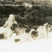 "Florence Clark and her ""Eskimo dog team"""