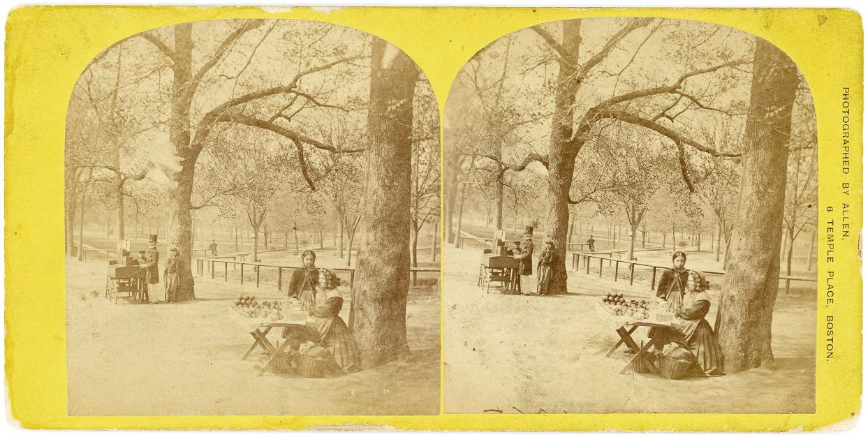 Apple seller on Boston Common by Edward L. Allen 2